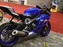 Yamaha YZF- R6 Y17 Walkaround - Blau ist rattig