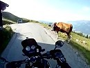 Zillertaler Höhenstrasse Motorradtour mit Kumpels