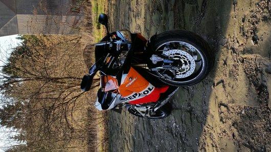 Bild Honda  CBR 600 RR von gauli1976