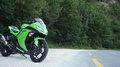 Kawasaki Ninja 300 klein