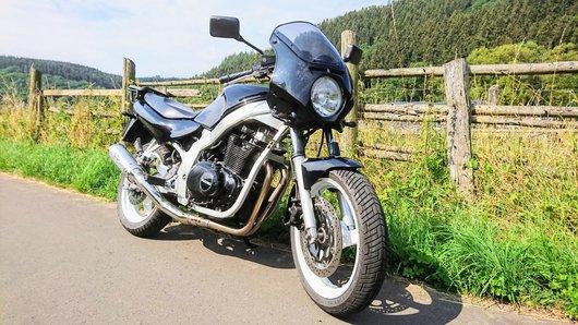 Bild Suzuki  Gs500e  von Hannebembel