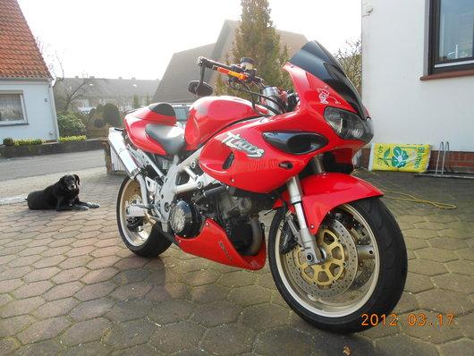 Bild Suzuki TL1000 von charlyoer